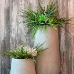 Nečekané výhody moderních zahradních květináčů
